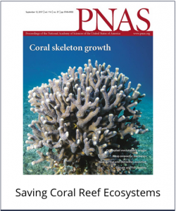 Saving Coral Reef Ecosystems